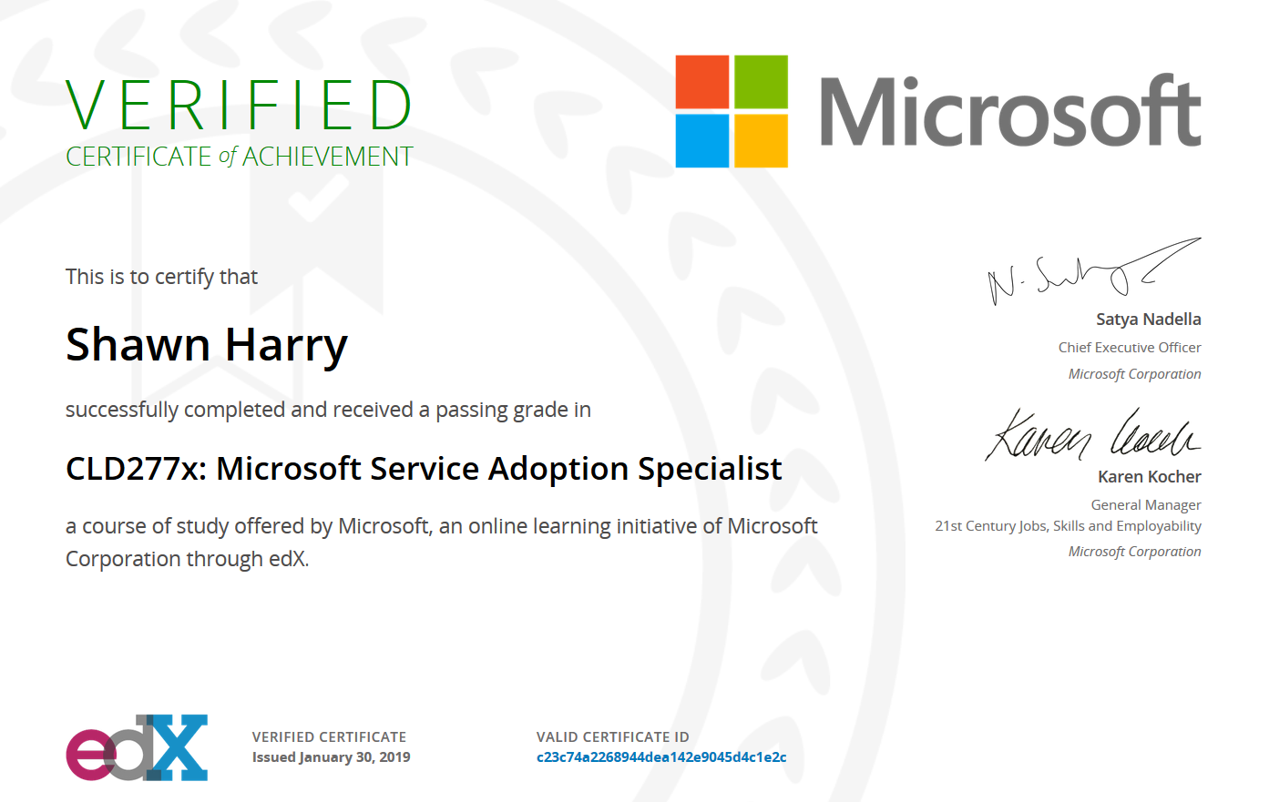 Microsoft Teams Service Adoption Specialist